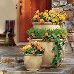 Ghivece si jardiniere pentru flori